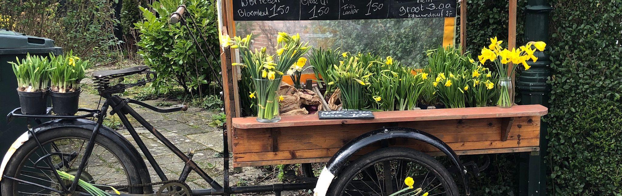 Het voorjaar roept!